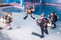 swimming pool dives