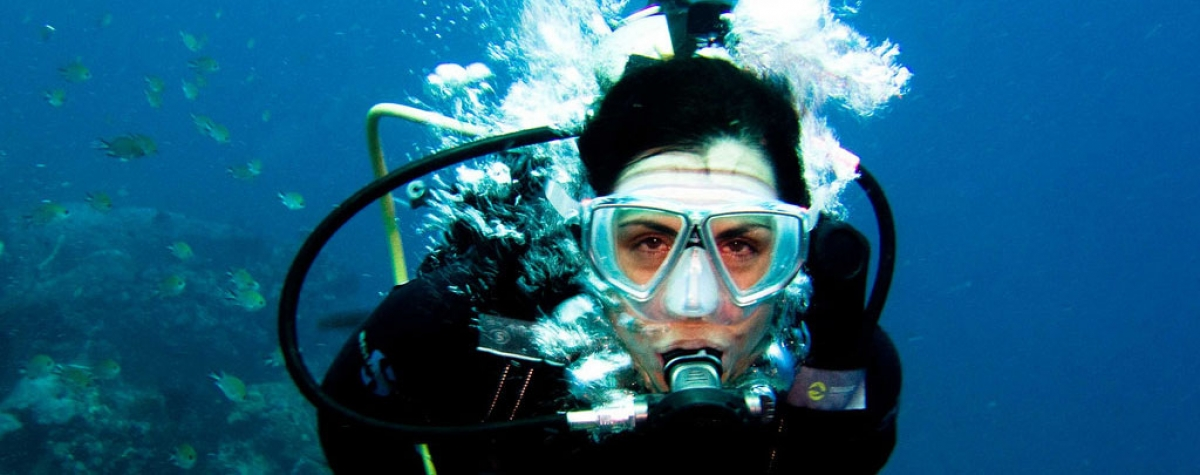 Learn to Scuba Dive - Summer Student Special